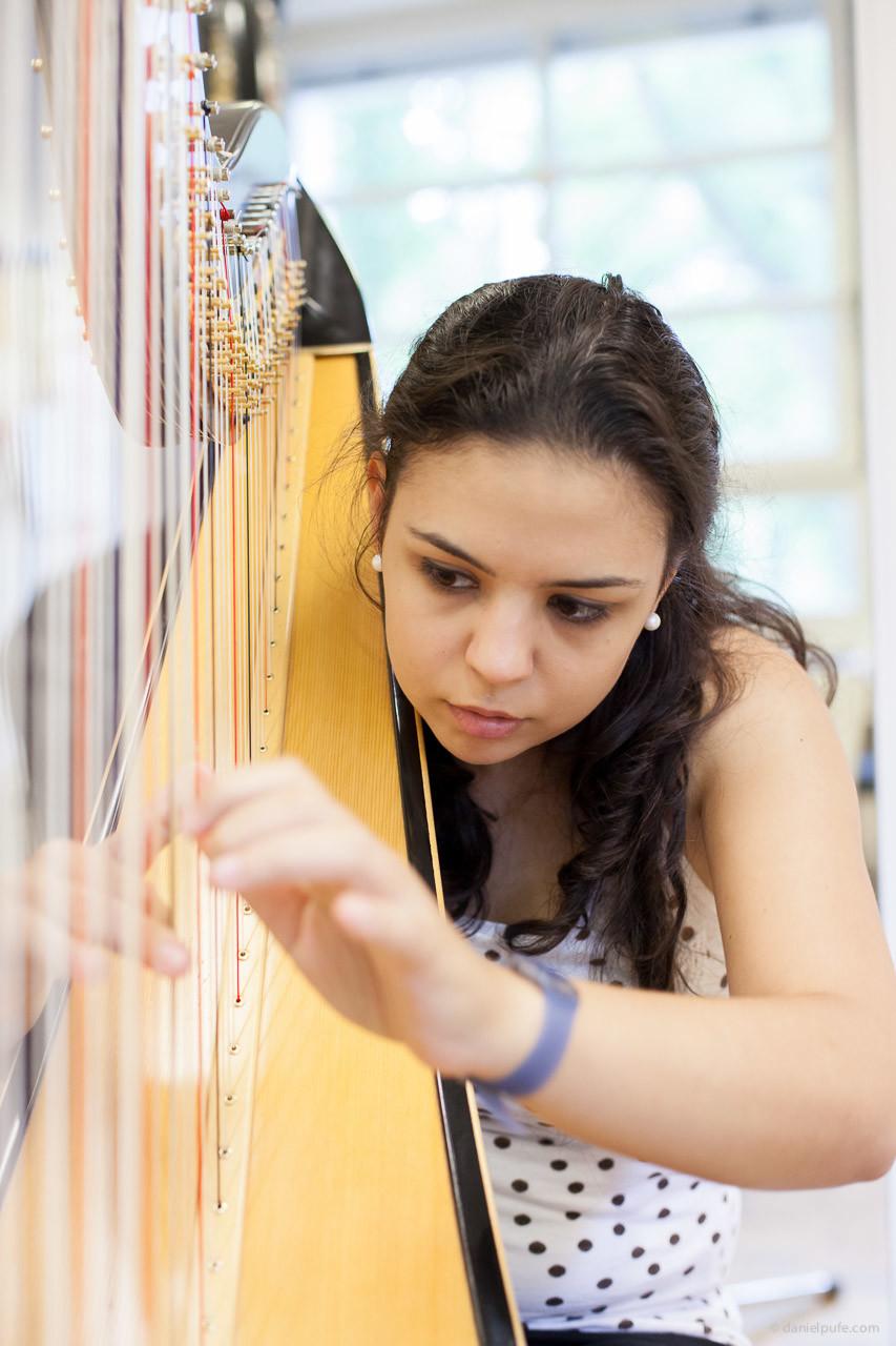 Harp Room - Akademie für Tonkunst